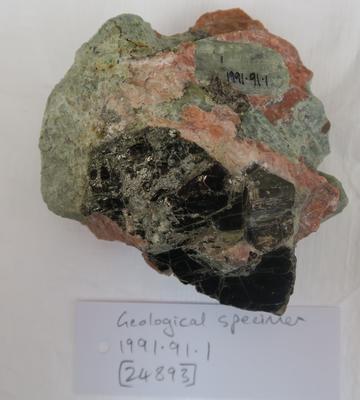 Geospecimen