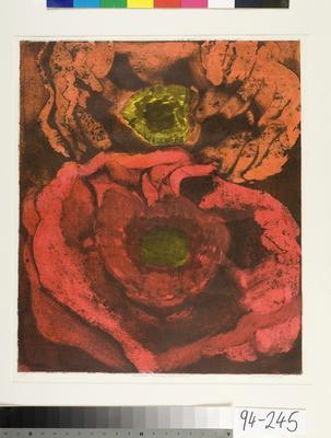 Flower Study Series 6