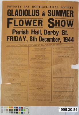 Gladiolus & Summer Flower Show