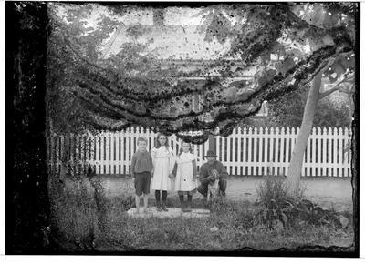 Glass plate negative; 1910-1920; 33394