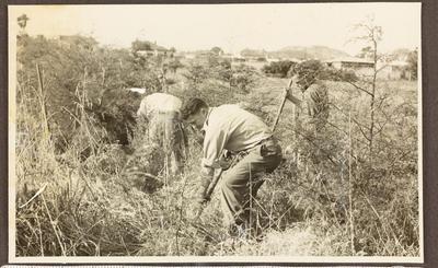 Jaycees members scrub clearing