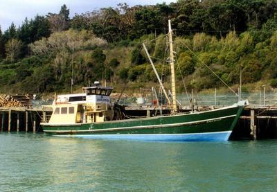 Endeavour in Gisborne Harbour
