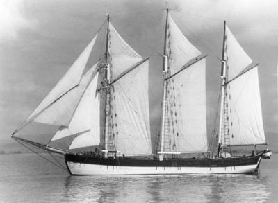 Baltic Trader Sailing Ship Sophia