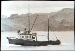 Telstar in Tūranganui-a-Kiwa/Poverty Bay
