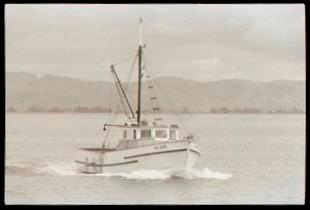 Boat in Tūranganui-a-Kiwa/Poverty Bay
