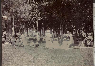 Mutual Improvement Society's picnic
