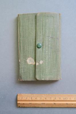 1919 diary