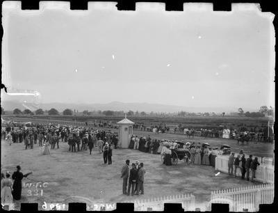Horse racing, A & P Show, 1896.