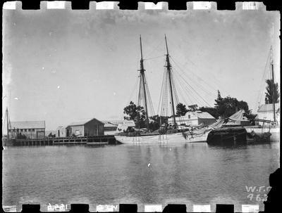 """""""Waiapu"""" at Reads Quay, 1896."""