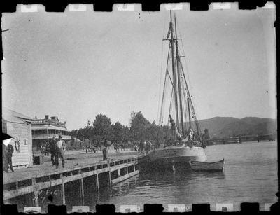 """""""Waiapu"""" at Reads Quay 1896."""