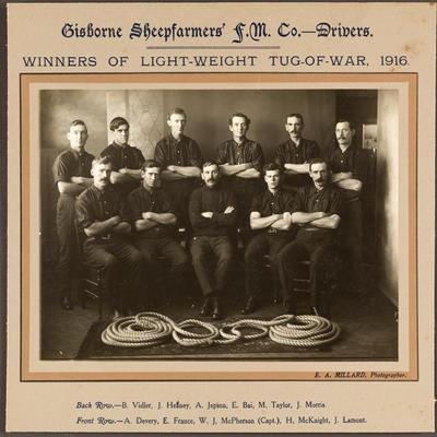 Gisborne Sheepfarmers F. M. Co. - Drivers. Winners of Light-Weight Tug of War, 1916; 1916; 42844