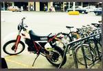 Bike rack with bikes